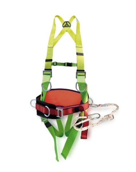 Harnesses & Belts